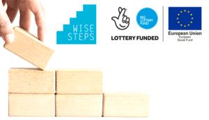 Wise Steps Enterprise Support