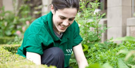 Zero Waste volunteer programmes